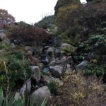 Photo of rockery and waterfall in Copenhagen Botanical Gardens
