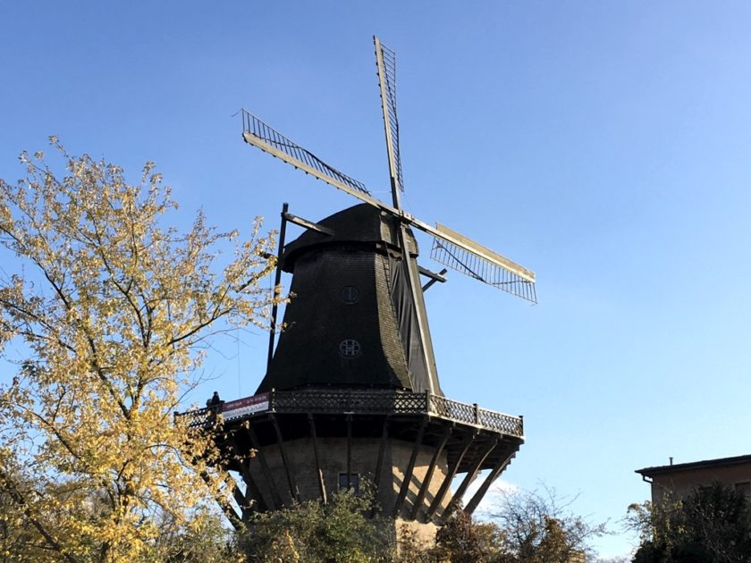 Windmill in Sanssouci Park